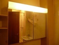 Spiegelschrank Wc